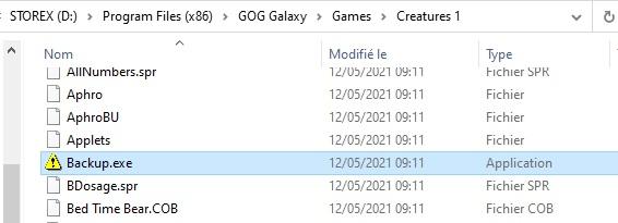 """Liste de fichiers contenant """"backup.exe"""""""
